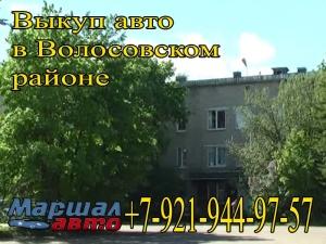 Помощь в выкупе авто в Волосовском районе