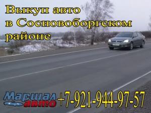 Сосновоборском районе выкуп автомобилей от 2000 года